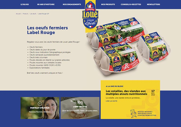 Loue Site internet Desktop 2