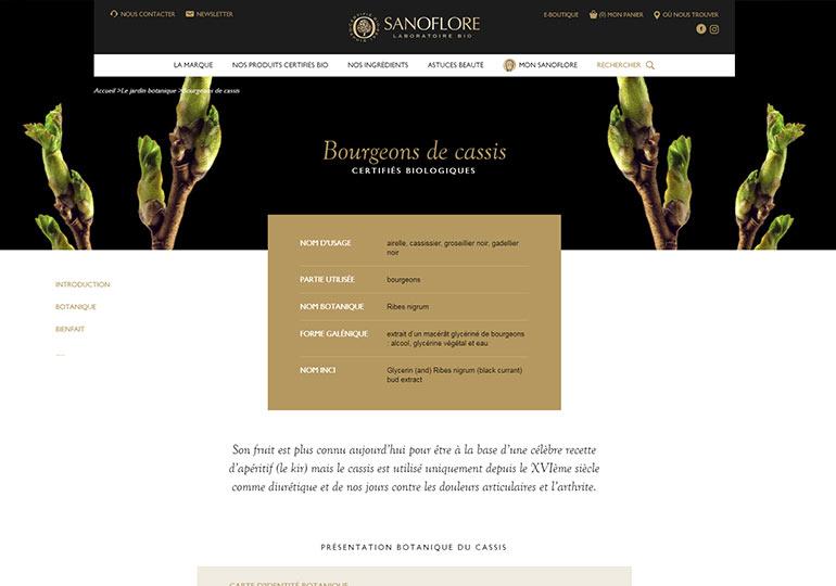 Sanoflore Site web vitrine desktop 3