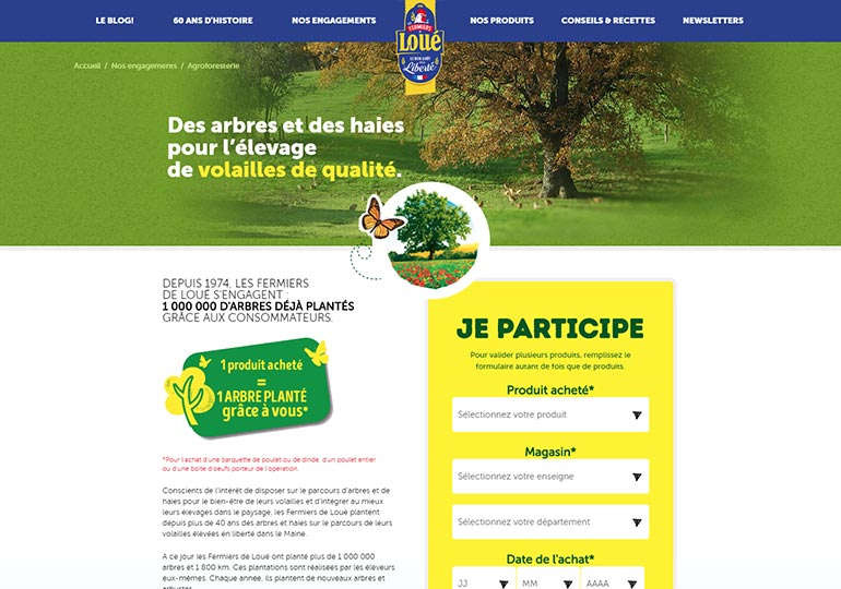 Loue Site internet Desktop 3